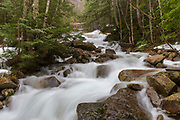 Cascades along Walker Brook in Franconia Notch State Park of the New Hampshire White Mountains during the spring months.