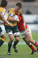 Australian flanker Ben McCalman on the charge during the Division A 3rd/4th place clash at Ravenhill, Belfast. Result Australia 25 Wales 21.
