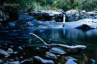 Image Ref: CA297<br /> Location: Sheoak Hike, Great Ocean Road<br /> Date of Shot: 26.04.18