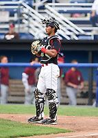 Batavia Muckdogs catcher Brad Haynal (23) during a game against the Mahoning Valley Scrappers on June 22, 2015 at Dwyer Stadium in Batavia, New York.  Mahoning Valley defeated Batavia 15-11.  (Mike Janes/Four Seam Images)