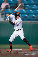 San Jose Giants center fielder Bryce Johnson (28) at bat during a California League game against the Modesto Nuts at San Jose Municipal Stadium on May 15, 2018 in San Jose, California. Modesto defeated San Jose 7-5. (Zachary Lucy/Four Seam Images)