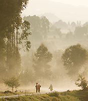 People walking along a misty road towards Ruhengeri in Parc National Des Volcans, Rwanda