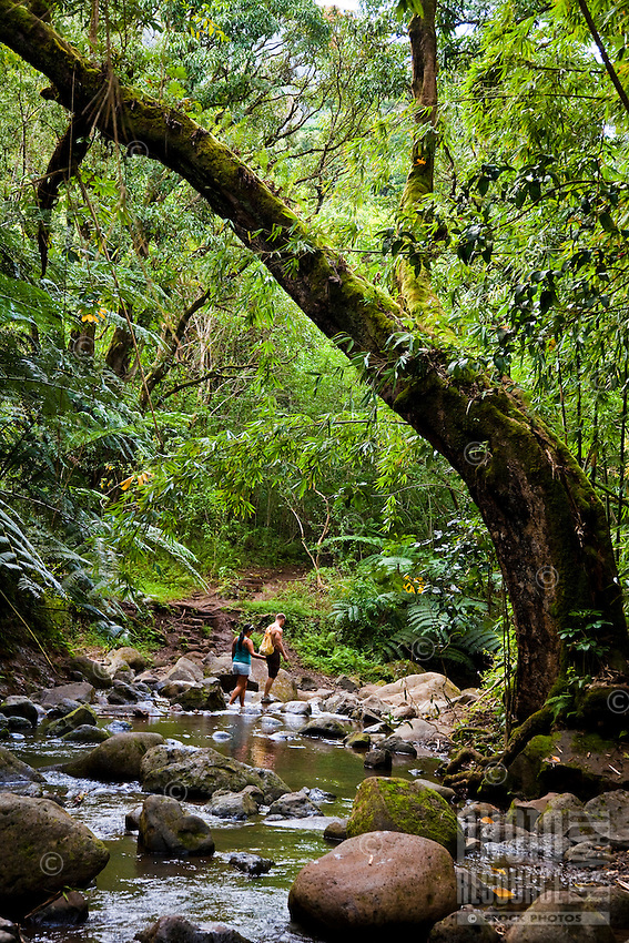 A couple of tourists hiking through a jungle to Maunawilil Falls