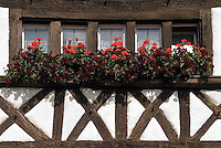 Germany, Baden-Wuerttemberg, Markgraefler Land, Istein, half-timbered house, window flower-decorated