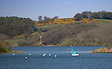 2016_05_05_CARSINGTON_SAILING