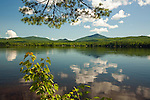 View of Webb Lake and Mt. Blue from Mt. Blue State Park, Maine, USA