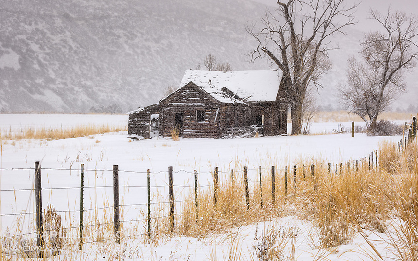 Abandoned Homestead. I wonder what the holidays were like for the family that may have occupied this home 100 winters ago? Summit County, Utah