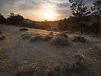 OR_LOCATION_45182