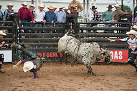 Clancy Hart attempts 7673 Berry's Paint Brush of Bonsall Bucking Bulls.com during the American Bucking Bull, Incorporated event in Decatur, TX - 6.3.2016. Photo by Christopher Thompson