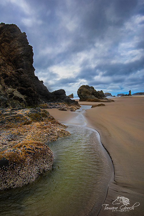 A photo of Bandon Beach Oregon under cloudy skies