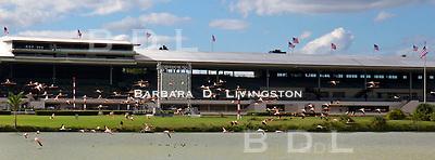 Hialeah Park, racetrack, horse racing, Quarter Horse racing, Citation, Miami, flamingos, John Brunetti, racehorse