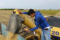 TURKEY, Solaklı Belediyesi, near Adana, harvest of conventional soybeans with New Holland combine harvester/ TUERKEI, bei Adana, Ernte von Soja mit einem New Holland Maehdrescher