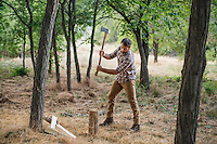 Zach Nager chopping wood with a Husky axe in Boulder, Colorado, Wednesday, August 11, 2016. <br /> <br /> Photo by Matt Nager