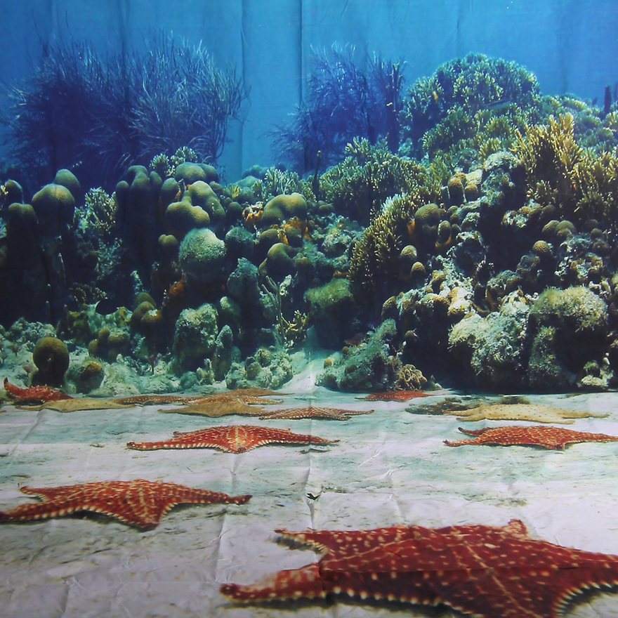 Backdrop featuring an aquarium underwater scene with water, starfish on sand, coral and fish