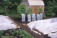HB07-027x  Garden row coverings - floating row covers - fabric and poly plastic