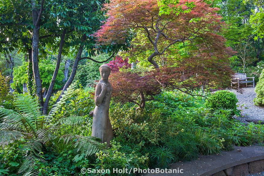 Sculpture in foliage shrub border under tree at Marin Art and Garden Center