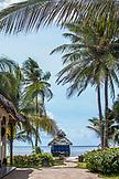 ZANZIBAR, Bwejuu Beach, a Blue Beach Huts under Palm Trees at the Palms Resort. facing the Ocean