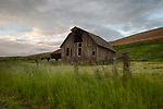 Idaho/Washington state line area. Moscow, the Palouse. An old barn in the dawn light of early spring.