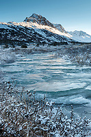 Winter landscape of South Fork Campbell Creek nearly frozen in Chugach Mountains in Chugach State Park. Glenn Alps area of Anchorage, Alaska   November 2016<br /> <br /> Photo by Jeff Schultz/SchultzPhoto.com  (C) 2016  ALL RIGHTS RESVERVED