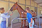 Evelyn Hanggi & Barbara Linsley Washing Horse
