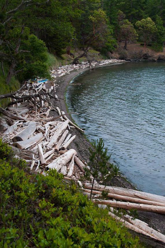 Driftwood and Kayaks on Beach at High Tide, Jones Island, San Juan Islands, Washington, US