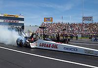 Jun. 1, 2014; Englishtown, NJ, USA; NHRA top fuel driver Morgan Lucas  during the Summernationals at Raceway Park. Mandatory Credit: Mark J. Rebilas-