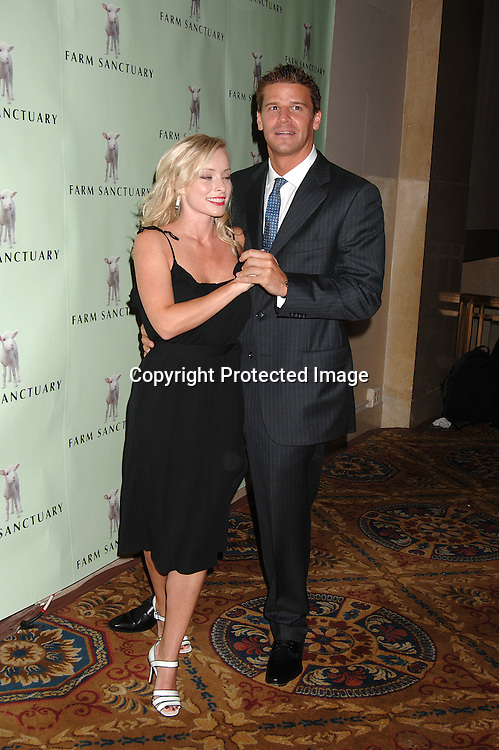 David Boreanaz and wife Jamie Bregman..at The Farm Sanctuary 20th Anniversary Gala for ..for Farm Animals on May 20, 2006 at ..Ciprianis Wall Street...Robin Platzer, Twin Images