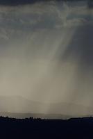 Summer afternoon shower's en southern Utah's Dexie National Forest.