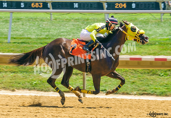 Likeuasafriend winning at Delaware Park on 8/15/16