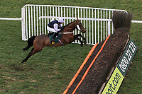 Fine Parchment ridden by Mr H A A Bannister in jumping action during the Betfair Commits £40m to British Racing Handicap Chase - Horse Racing at Fakenham Racecourse, Norfolk.