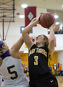 Prairie Grove  vs Ozark - 4A Girls Basketball
