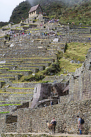Peru, Machu Picchu.  Tourists Above View Ruins from the Guardhouse Terraces.  Tourists below Greet Alpaca.