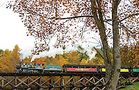 Tweetsie Railroad Theme Park includes one of the most unique historic US railroads operating today. The train line runs between Blowing Rock and Boone, North Carolina, extending more than three miles and pulled by a vintage steam locomotive. The railroad ride offers it's riders  a beautiful glide through the Fall leaf foliage of the North Carolina mountains (Blue Ridge Parkway) in autumn 2013, when the mountain forests and trees transform themselves a tapestry of brilliant orange, red and yellow autumn colors.