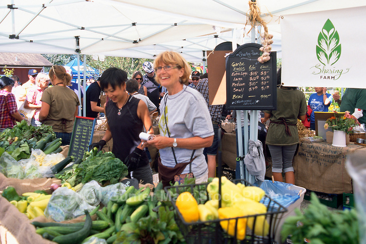 5th Annual Garlic Festival, August 2013 (hosted by The Sharing Farm) at Terra Nova Rural Park, Richmond, BC, British Columbia, Canada - Organic Vegetables for sale, grown by The Sharing Farm