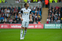Saturday 17 August 2013<br /> <br /> Pictured: Michu of Swansea<br /> <br /> Re: Barclays Premier League Swansea City v Manchester United at the Liberty Stadium, Swansea, Wales