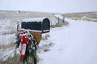 Wreath with snow and horses. Near Joseph, Oregon