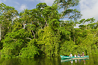 Jungle canal tour in Tortuguero, Costa Rica, Central America
