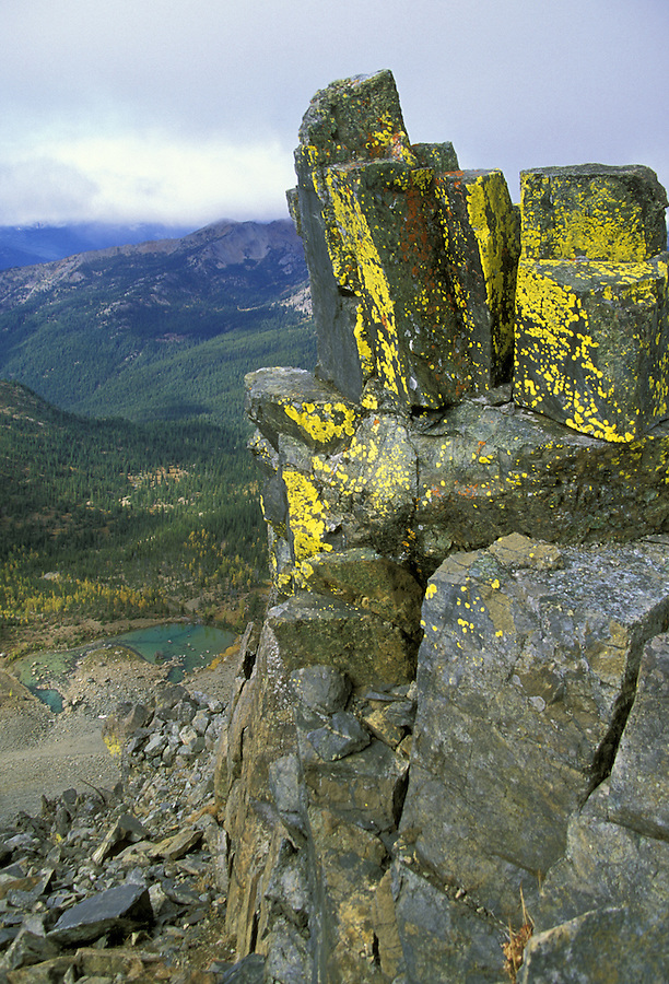 Lichen covered rocks above Lake Ann, Wenatchee National Forest, Cascade Mountains, Washington