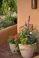 Containers of herbs and flowers on patio in New Mexico garden
