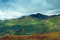 Ben Arthur (The Cobbler) and Beinn Narnain, the Arrochar Alps, from Cruach Tairbeirt, Loch Lomond and the Trossachs National Park, Argyll & Bute