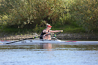 Race: 171  W.IM3.1x   Winner of Race: 134  vs Winner of Race: 133 <br /> <br /> Ross Regatta 2017 - Monday<br /> <br /> To purchase this photo, or to see pricing information for Prints and Downloads, click the blue 'Add to Cart' button at the top-right of the page.