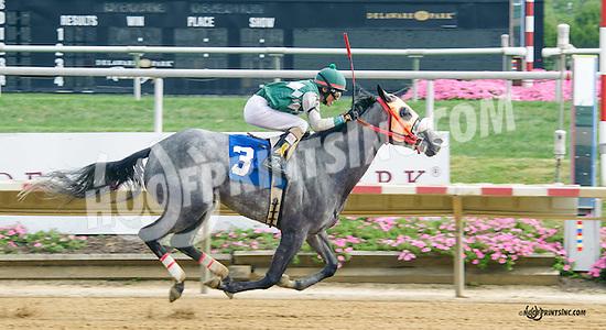 Silk n'Sequins winning at Delaware Park on 9/29/15