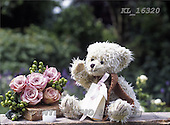 Interlitho, Alberto, REALISTIC ANIMALS, teddies, paintings, bear, roses, gift, KL16320,#A#