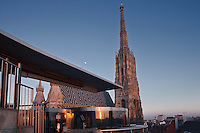 Europe/Autriche/Niederösterreich/Vienne: Cathédrale Saint-Etienne, Stephansdom, vue de la terrasse du restaurant Do&Co