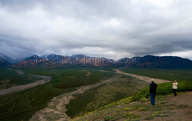 The Plain of Murie, Denali National Park, seen from Polychrome Pass. The tourists have hopped off the Denali Shuttle Bus...