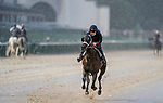 September 3, 2020: Money Moves exercises as horses prepare for the 2020 Kentucky Derby and Kentucky Oaks at Churchill Downs in Louisville, Kentucky. The race is being run without fans due to the coronavirus pandemic that has gripped the world and nation for much of the year. Scott Serio/Eclipse Sportswire/CSM