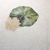 This custom Lily Pad mosaic floor is shown in Thassos, Spring Green, Chartreuse, Verde Luna, Rosa Portagallo, Crema Valencia, Sylvia Gold and Persian Gold.
