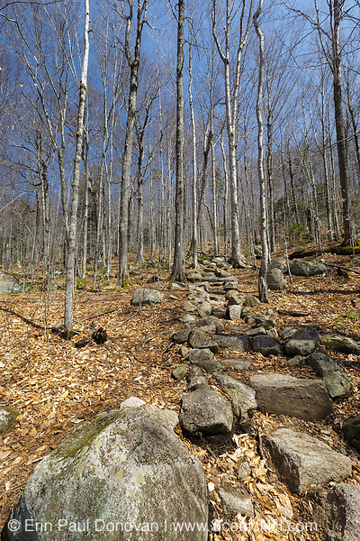 Rock steps along the Appalachian Trail (Liberty Spring Trail) in the White Mountains, New Hampshire USA