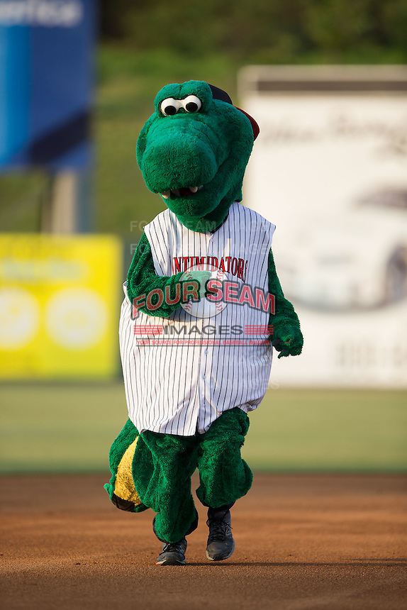Kannapolis Intimidators mascot Tim E. Gator races around the bases between innings of the South Atlantic League game against the Asheville Tourists at Kannapolis Intimidators Stadium on May 26, 2016 in Kannapolis, North Carolina.  The Tourists defeated the Intimidators 9-6 in 11 innings.  (Brian Westerholt/Four Seam Images)
