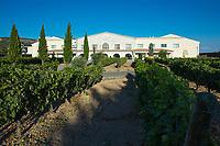 Winery Bodega Emina, ribera del Duero wine production in Valbuena de Duero, Valladolid,  Spain